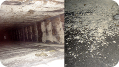 Mold in Ductwork Caused by HVAC Operation